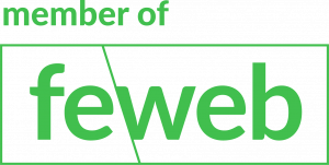 webdesign feweb